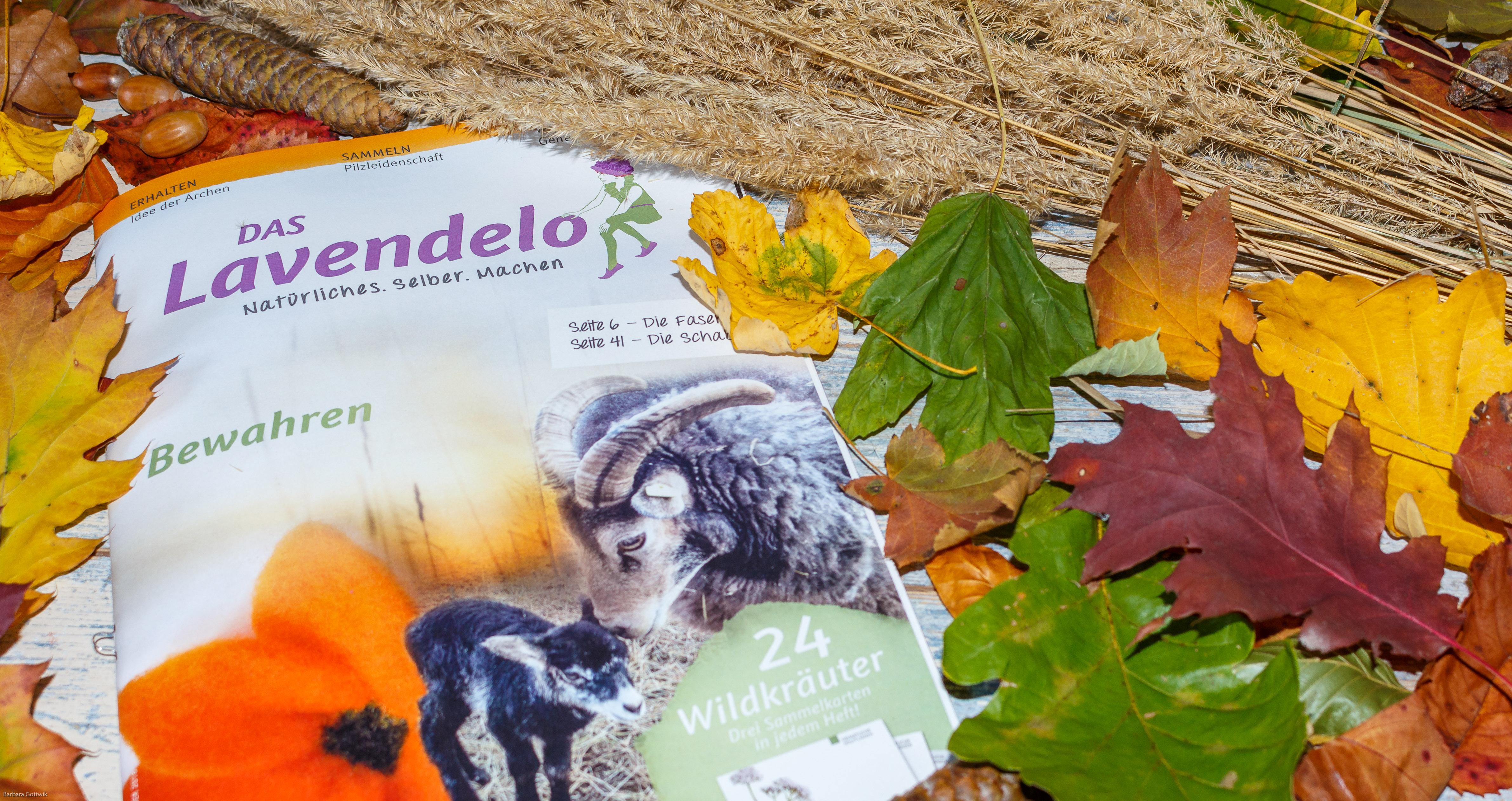 Das Lavendelo Ausgabe 8