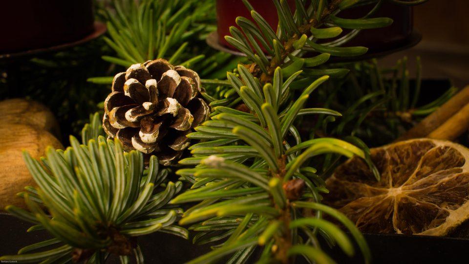 Weihnachtsschmuck aus Essbarem